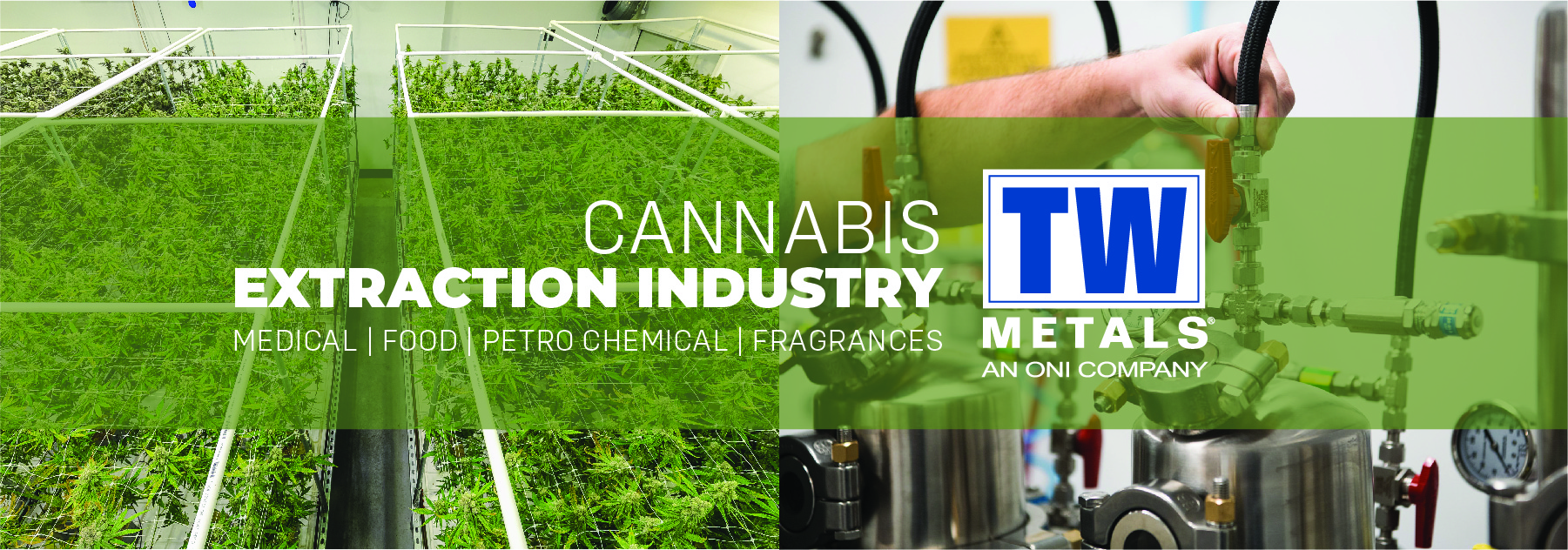 Cannabis Extraction Industry